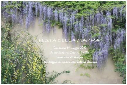 Festa della mamma 2014 001